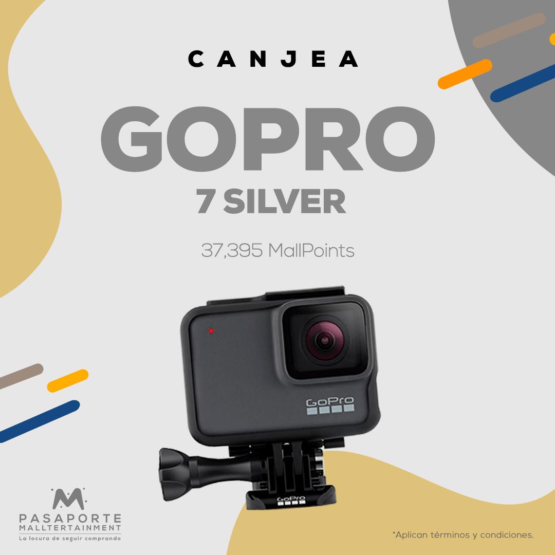 Camara GO Pro 7 Silver